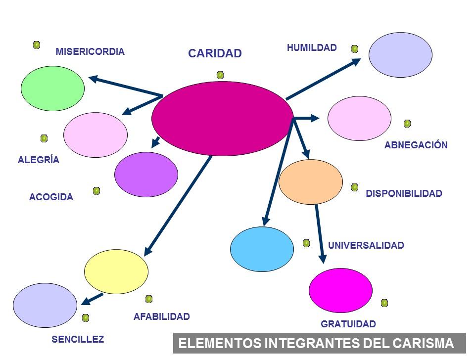 ELEMENTOS INTEGRANTES2
